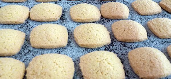 Canistrelli de la biscuiterie José Orsoni